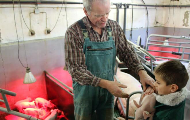 Der Bauer gibt einem Jungen ein Ferkel auf den Arm